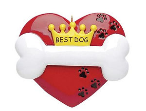 351 BEST DOG.jpg