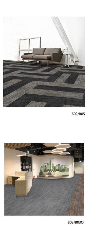 Phoenix-B02&05&03&03O.jpg