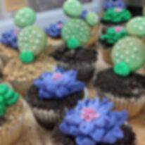 Succlent Cupcakes.jpg