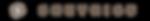 ST website logo-03.png