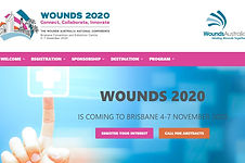wounds conf 31.JPG