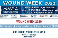 wounds conf 33.JPG