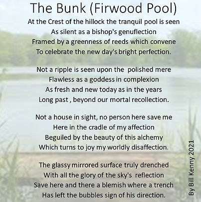 The Bunk (Firwood Pool) by Bill.JPG