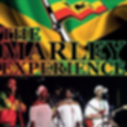 the-marley-experience--794794118-300x300