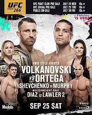 UFC image.jpeg