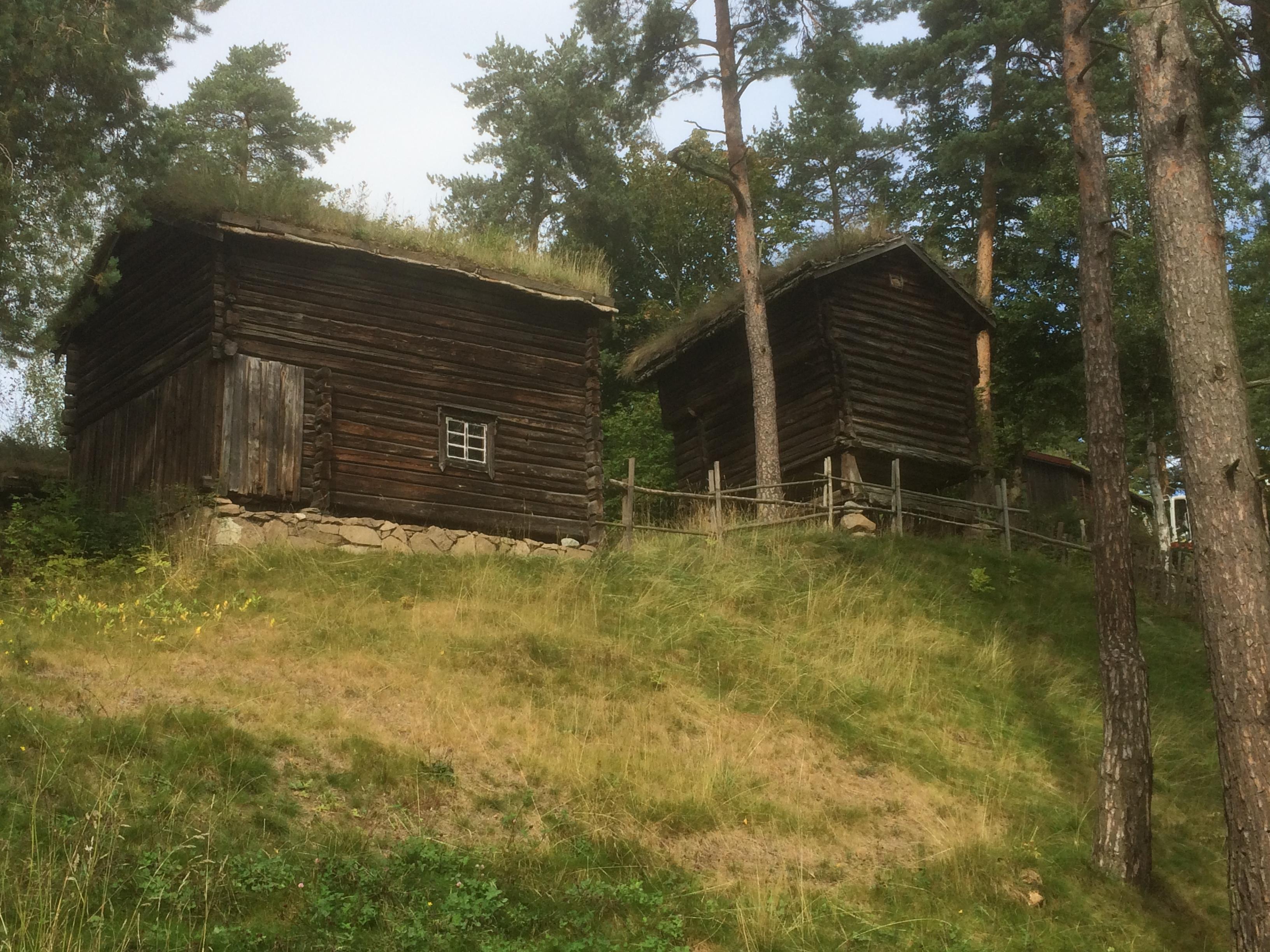 Wikinger Haus