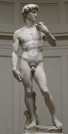 'David'_by_Michelangelo_Fir_JBU002 (2).j