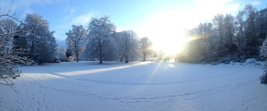 Lawn in Snow.JPG
