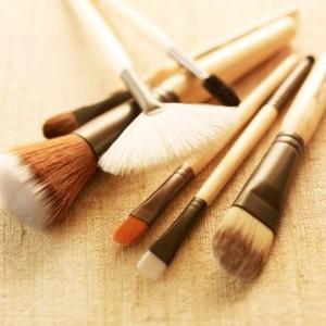 brushes new