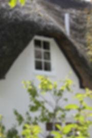 Wooden Window Repairs Dorchester
