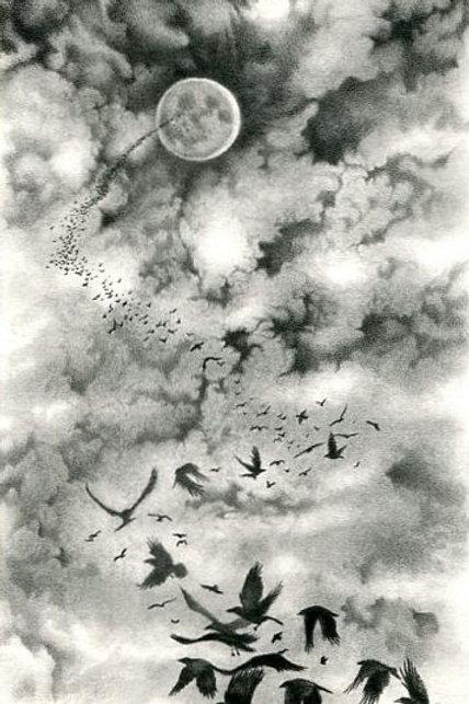 """Look Up"" - Open Edition Fine Art Print"