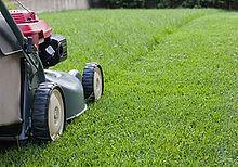 lawn mower closeup.jpg