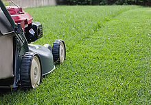 lawn mower closeup.jpg