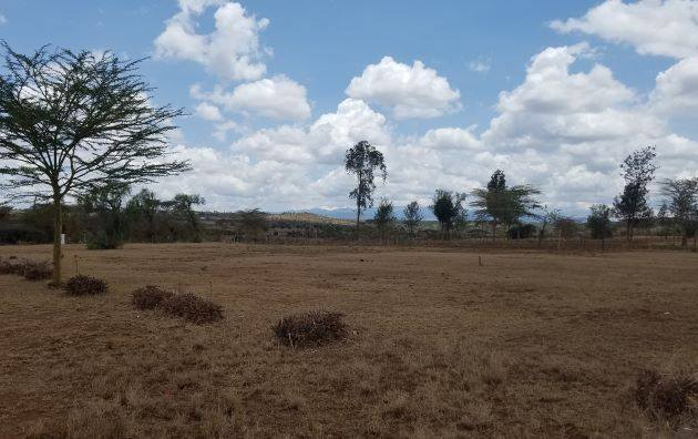 The hill in the distance beside the tree in the center of the page is where the Kienjero tank (Third water tank built by the partnership). Tom sees just how far the Sunbelt Belt team traveled with this water line.