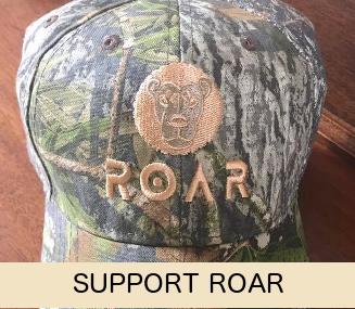 Support ROAR