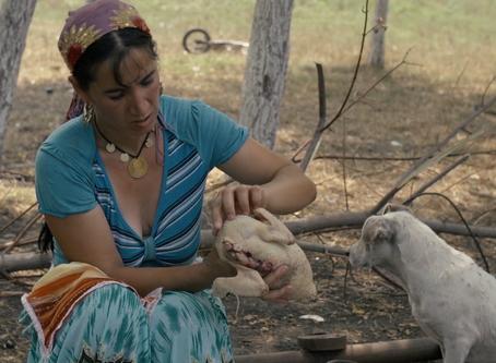 Filmpremiere: Oma schickt mich auf Reisen
