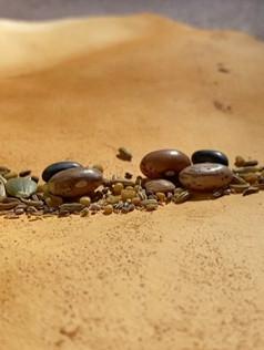 Seeds on solid ground