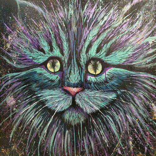 Bec Wilson | Splat Cat