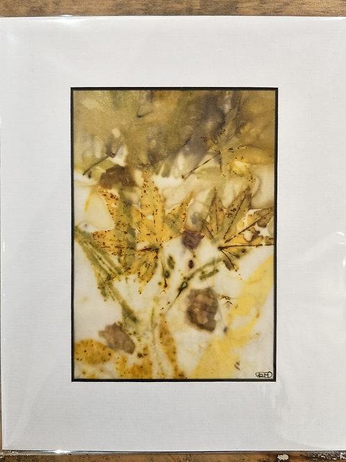 Dianne Mollison | Eco contact print 1
