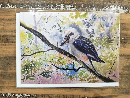 Glynis Brown | Kookaburra