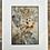 Thumbnail: Dianne Mollison | Eco contact print 2