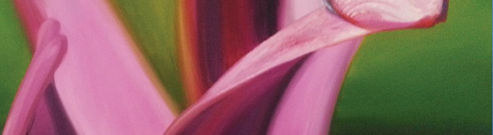 Screen Shot 2020-06-14 at 7.02.03 pm.png