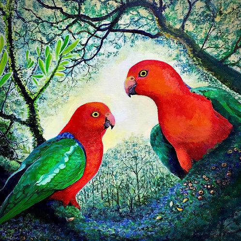 Jan Parish   Dandenong Ranges Birds