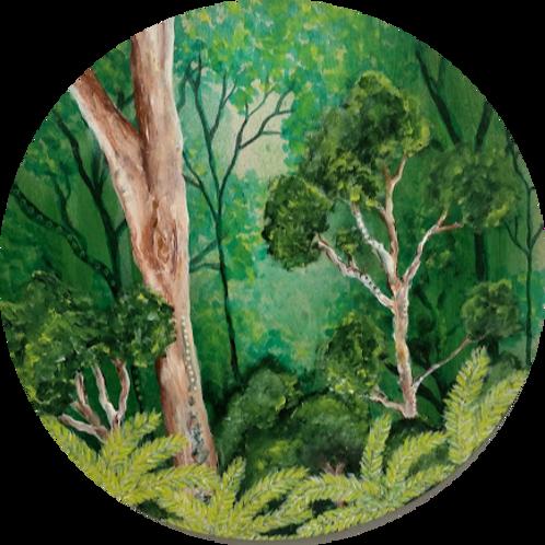 Jeffrey Bailey | Forest Escape
