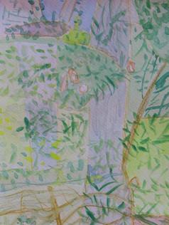 Treescape #5