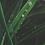 Thumbnail: Heather Bradbury | Tears of Life