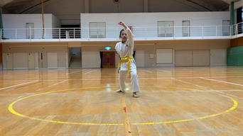2nd Itosu-ryu Karatedo virtual tournament