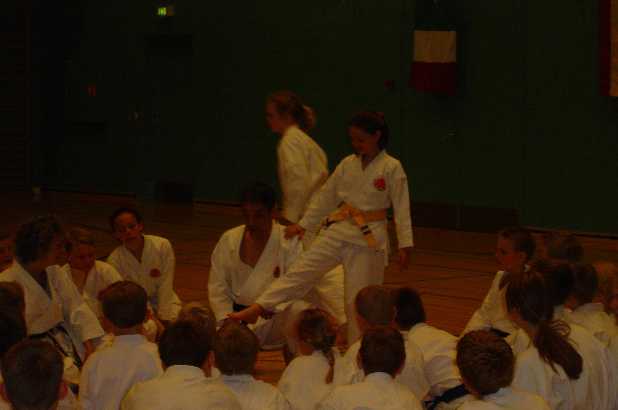 Sakagami sensai seminar 2004 075 (3)