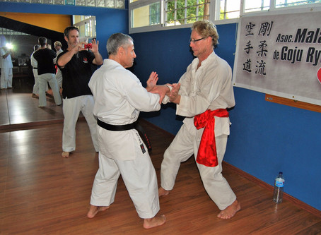 Exchange Practice with Chinese Martial Arts