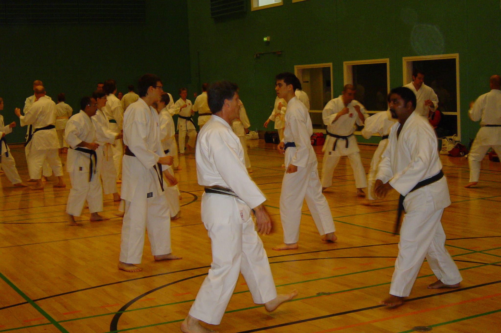 Sakagami sensai seminar 2004 075 (19)
