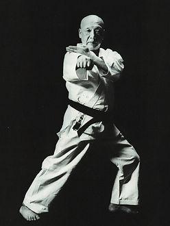 Karate, Wankan