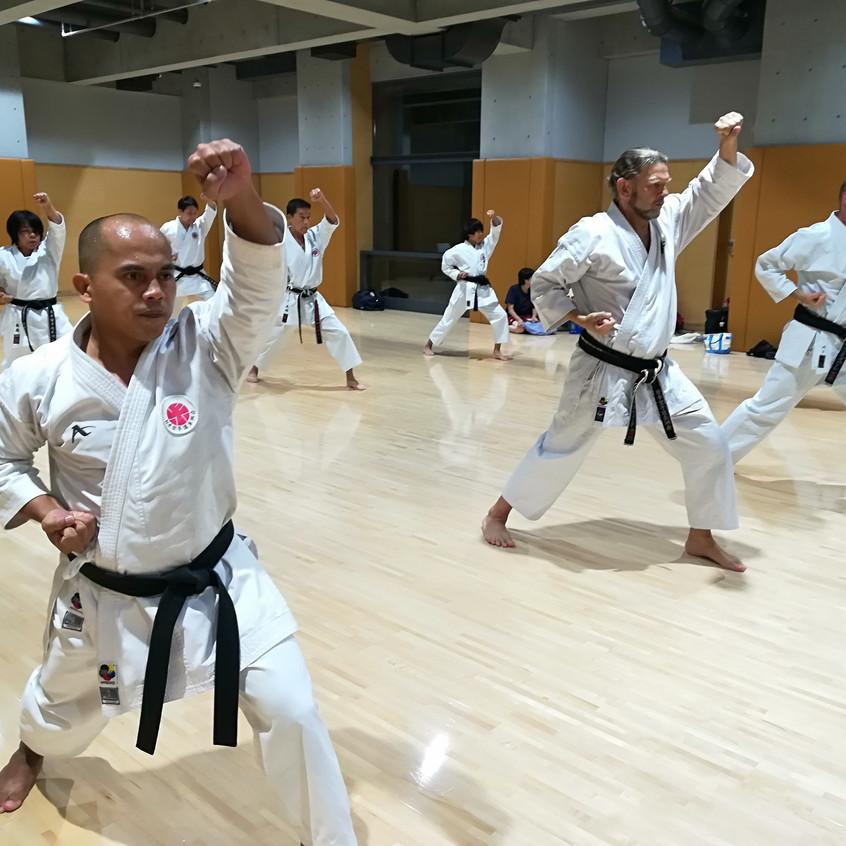 Practicing Pinan Katas (Itosu-kai)