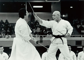 Ryukyu Kobudo Kongo-ryu, Sai vs Ken