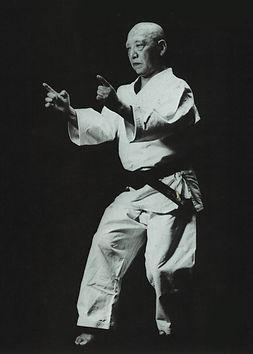 Karate, Unshu