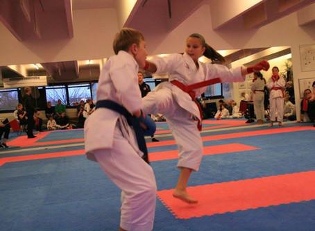 Dojo tournament in Dragør, Denmark