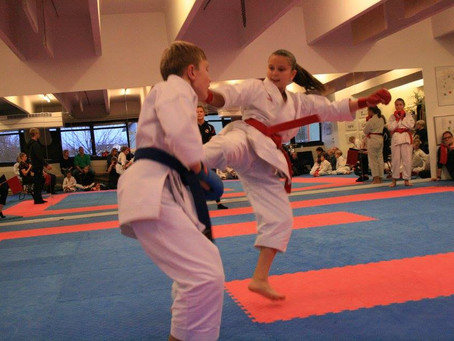 Dojo tournament in Dragør, Denmark