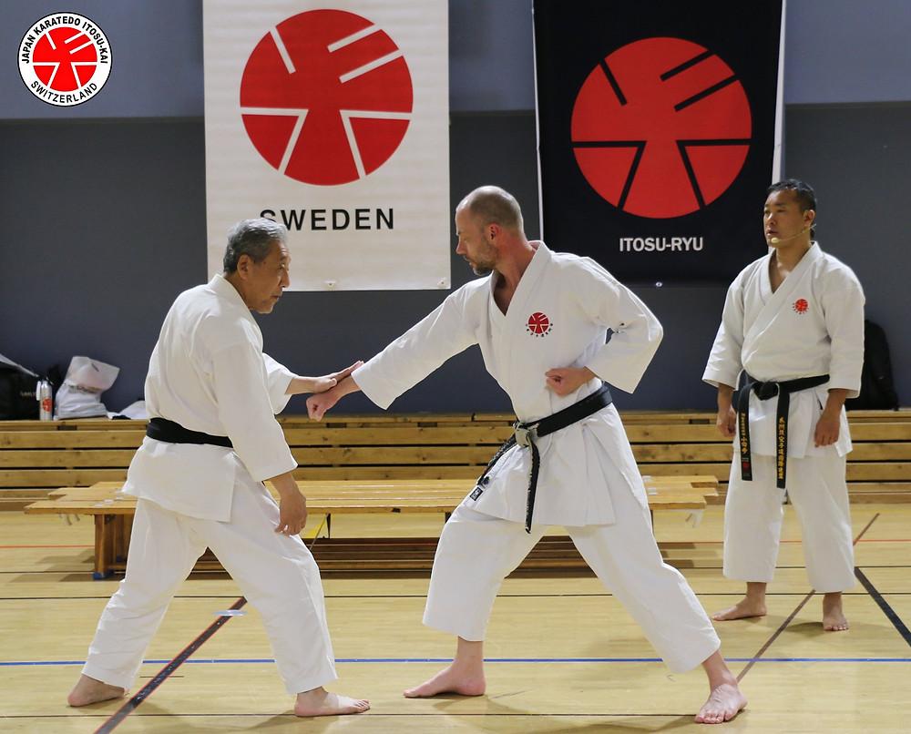 Itosu-kai European Black Belt Seminar 2019