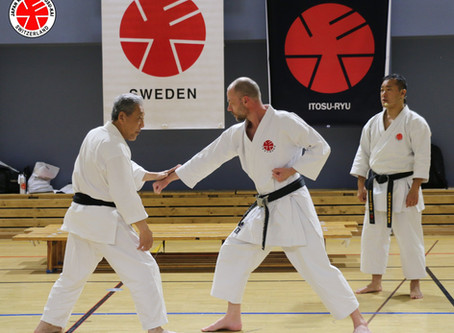 European Black Belt Seminar 2019 in Sweden