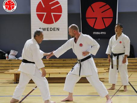 European Black Belt Seminar 2019 in Sweden
