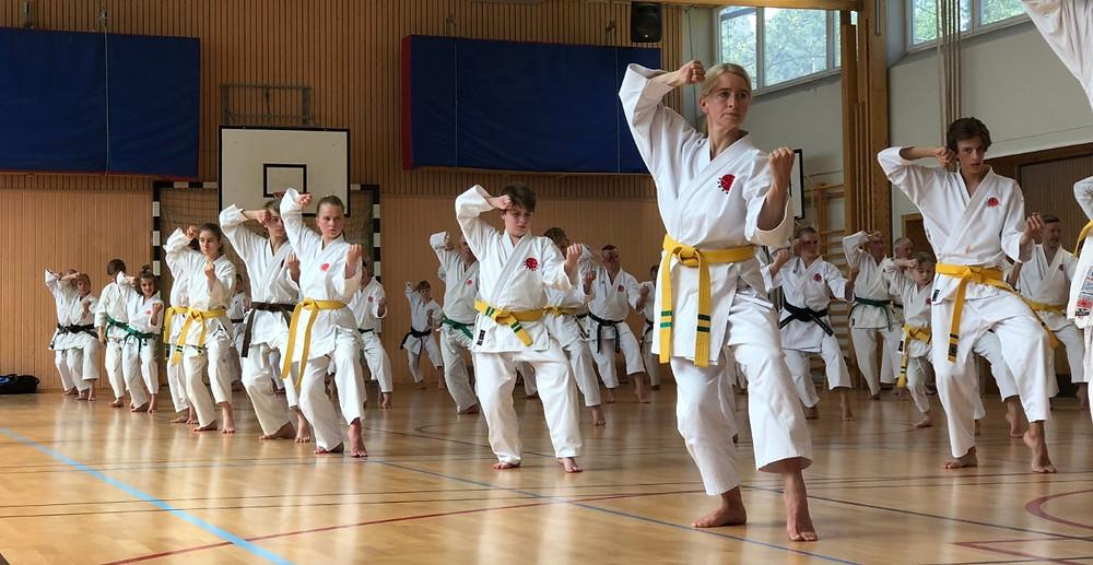 Itosu-kai Sweden Seminar