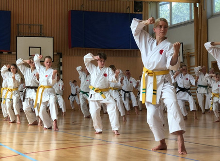 Martial Arts Seminars in Sweden