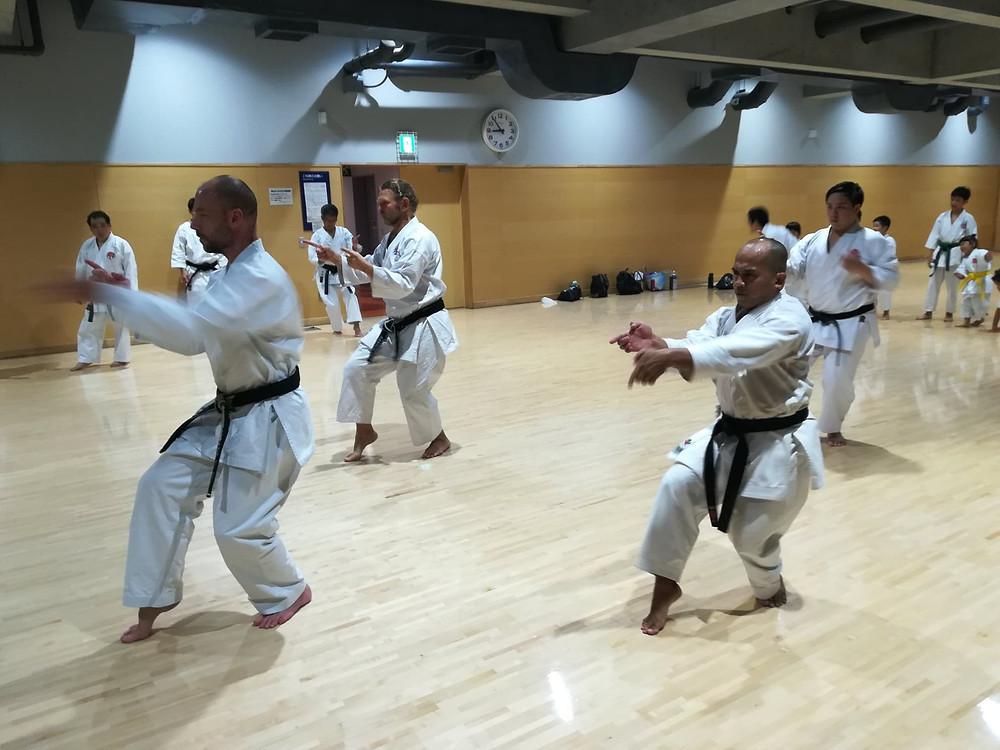 Practcing Unshu (Itosu-ryu)