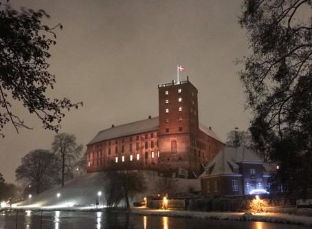 Season's Greetings from Itosu-Ryu Denmark