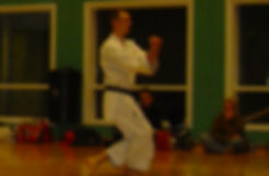 Team Kata with Bunkai (2).jpg