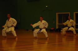 Team Kata with Bunkai (8)