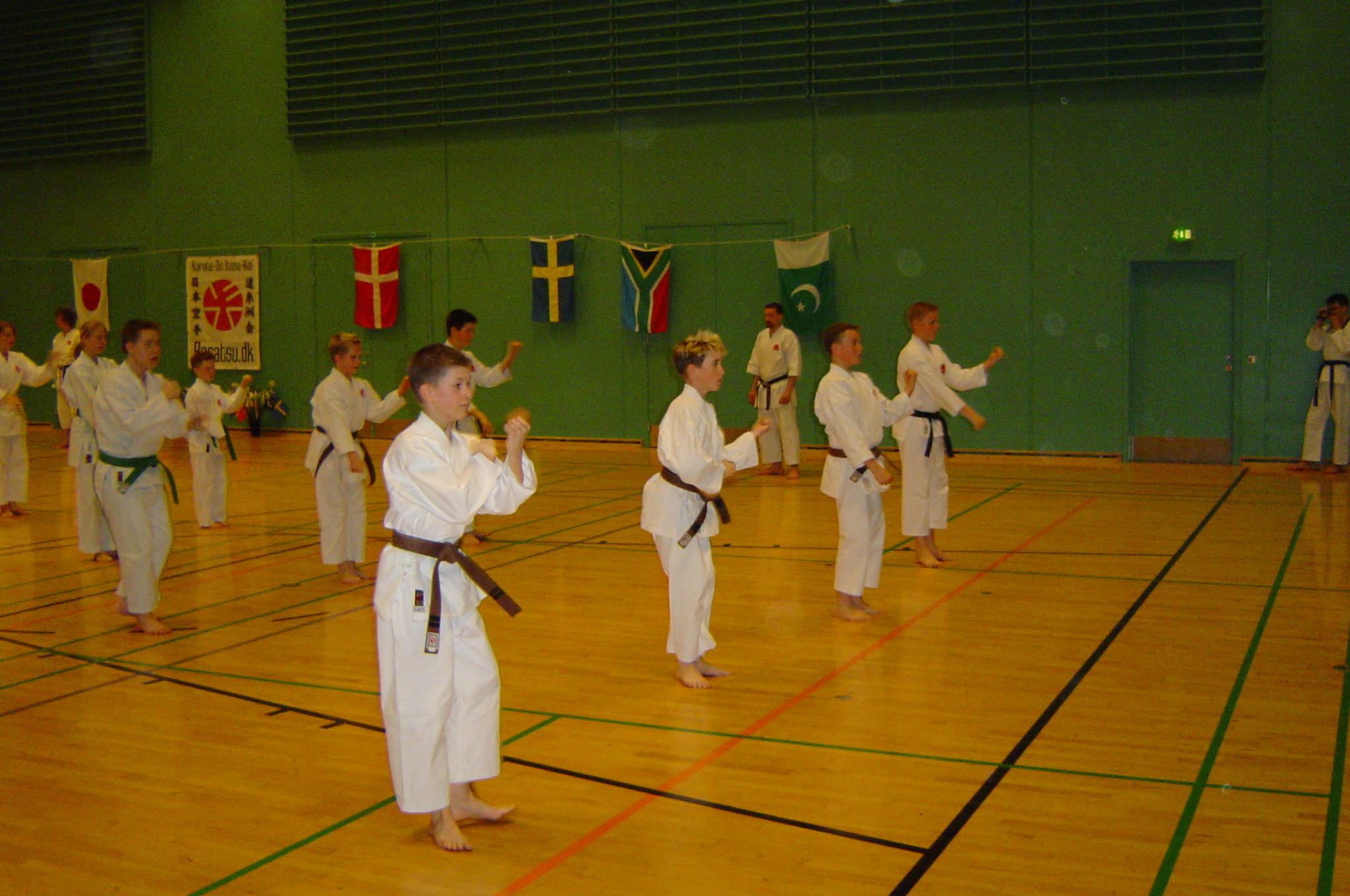 Sakagami sensai seminar 2004 075 (12)